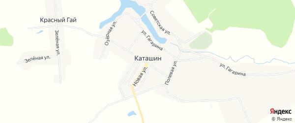 Карта села Каташина в Брянской области с улицами и номерами домов