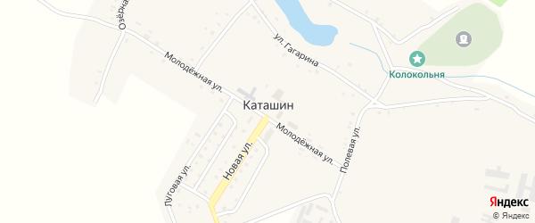 Территория 179км а/д Брянс-Новозыбков-Р.Беларусь на карте села Каташина с номерами домов