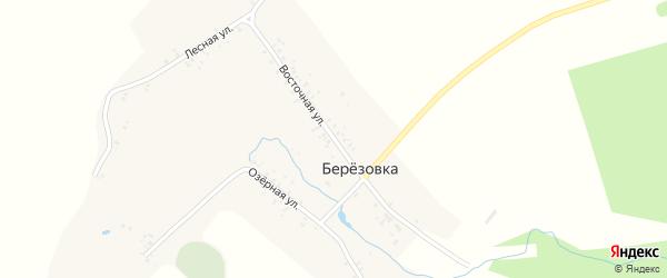 Восточная улица на карте деревни Березовки с номерами домов