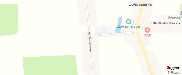 Улица Мичурина на карте села Соловьевки с номерами домов