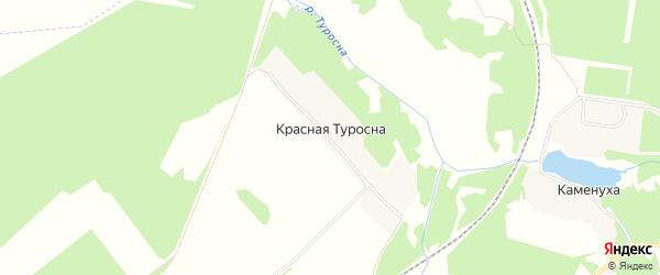 Карта поселка Красной Туросны в Брянской области с улицами и номерами домов