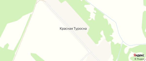 Новая улица на карте поселка Красной Туросны с номерами домов
