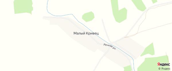 Карта деревни Малого Кривца в Брянской области с улицами и номерами домов