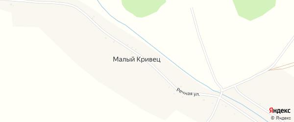 Речная улица на карте деревни Малого Кривца с номерами домов