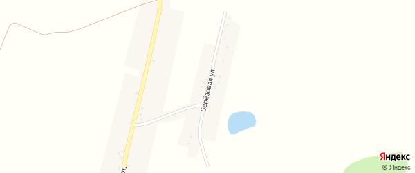 Березовая улица на карте села Соловьевки с номерами домов