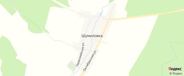 Карта села Шумиловки в Брянской области с улицами и номерами домов