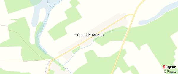 Карта поселка Черной Криницы в Брянской области с улицами и номерами домов