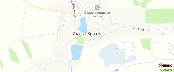 Карта села Старого Кривца в Брянской области с улицами и номерами домов
