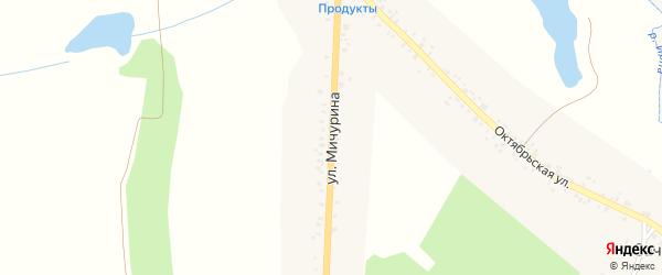 Улица Мичурина на карте села Сачковичей с номерами домов