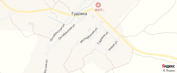 Молодежная улица на карте деревни Гудовки с номерами домов