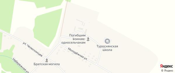 Центральная улица на карте села Туросны с номерами домов