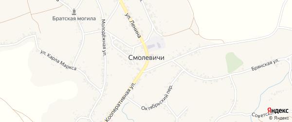 Кооперативный переулок на карте села Смолевичей с номерами домов