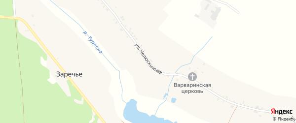 Улица Челюскинцев на карте села Туросны с номерами домов