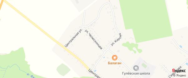 Улица Челюскинцев на карте села Гулевки с номерами домов