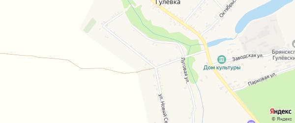 Улица Новый Свет на карте села Гулевки с номерами домов
