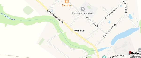 Центральная улица на карте села Гулевки с номерами домов