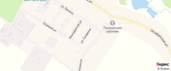 Улица Гагарина на карте села Сачковичей с номерами домов
