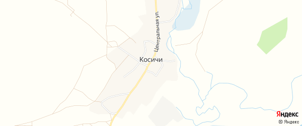 Карта села Косичи в Брянской области с улицами и номерами домов