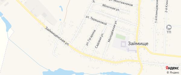 Улица Гагарина на карте села Займища с номерами домов