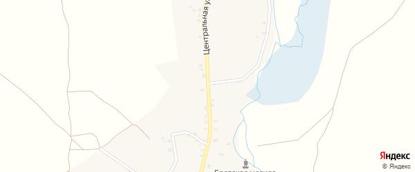 Центральная улица на карте села Косичи с номерами домов