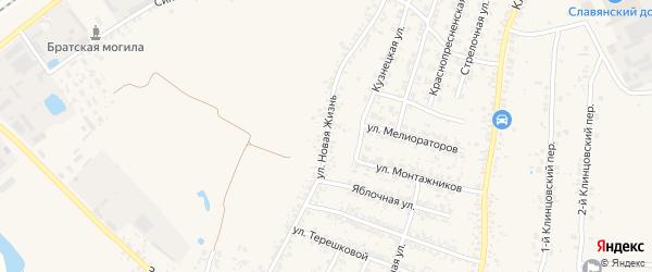Улица Новая Жизнь на карте села Займища с номерами домов