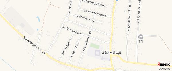 Улица Терешковой на карте села Займища с номерами домов