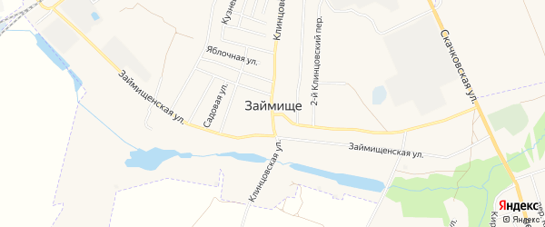 Карта села Займища города Клинцов в Брянской области с улицами и номерами домов