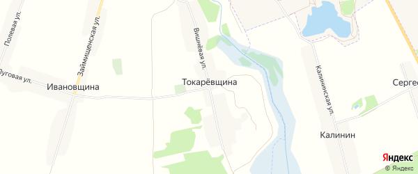 Карта поселка Токаревщины в Брянской области с улицами и номерами домов