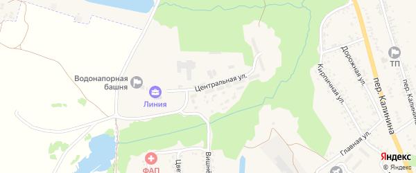 Центральная улица на карте села Займища с номерами домов