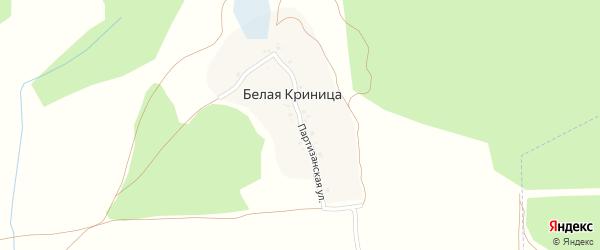 Партизанская улица на карте поселка Белой Криницы с номерами домов
