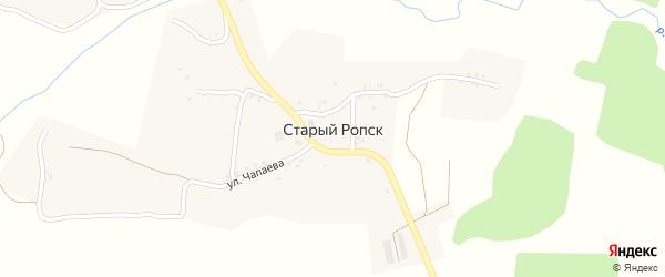 Улица Калинина на карте села Старого Ропска с номерами домов