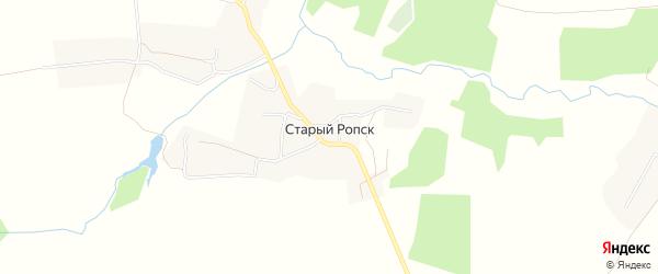 Карта села Старого Ропска в Брянской области с улицами и номерами домов