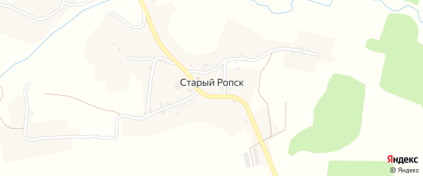 Заречная улица на карте села Старого Ропска с номерами домов