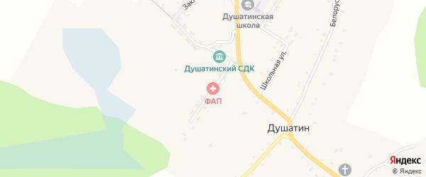 Городская улица на карте села Душатина с номерами домов