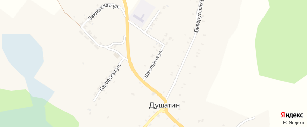 Школьная улица на карте села Душатина с номерами домов