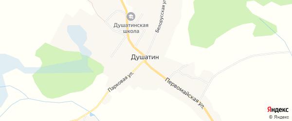 Карта села Душатина в Брянской области с улицами и номерами домов