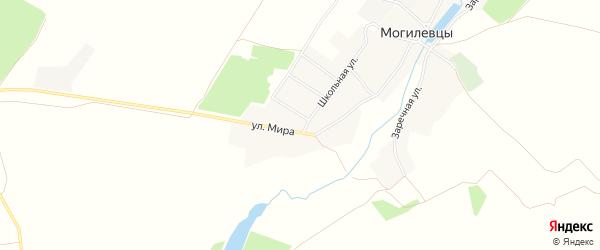 Карта села Могилевцы в Брянской области с улицами и номерами домов