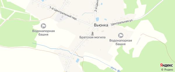 Центральная улица на карте деревни Вьюнки с номерами домов