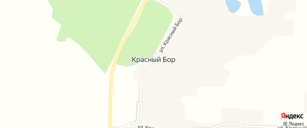 Улица Красный Бор на карте поселка Красного Бора с номерами домов