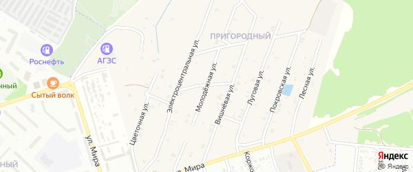 Молодежная улица на карте села Коржовки-Голубовки с номерами домов