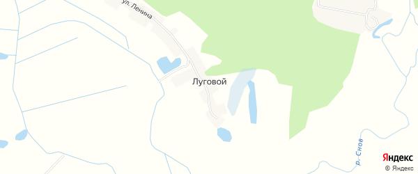 Карта Лугового поселка в Брянской области с улицами и номерами домов