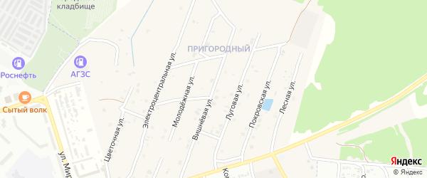Вишневая улица на карте села Коржовки-Голубовки с номерами домов