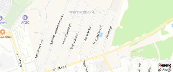 Луговая улица на карте села Коржовки-Голубовки с номерами домов