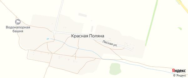 Лесная улица на карте поселка Поляны с номерами домов