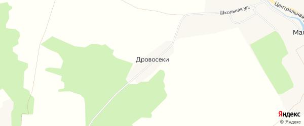 Карта поселка Дровосеки в Брянской области с улицами и номерами домов