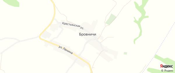 Карта села Бровничей в Брянской области с улицами и номерами домов