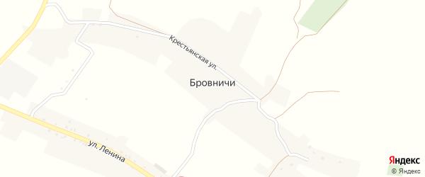 Переулок Механизаторов на карте села Бровничей с номерами домов