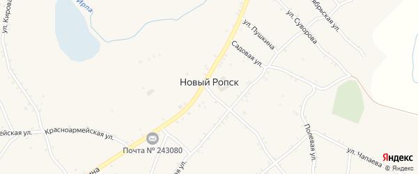 Кладбищенская улица на карте села Нового Ропска с номерами домов