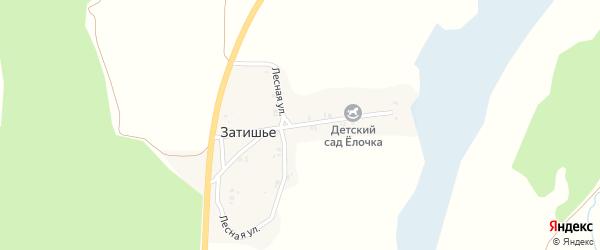 Лесная улица на карте поселка Затишья с номерами домов