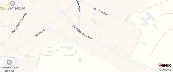 Улица Ковалевского на карте села Нового Ропска с номерами домов